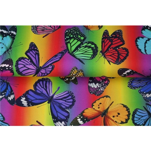 Butterflies with loveley colors
