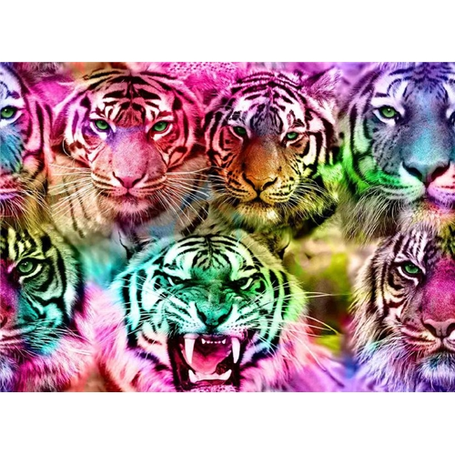 Colourful Tigers